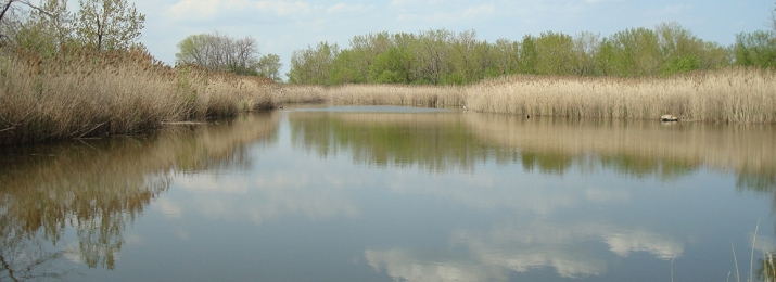 Big Marsh Open Space Reserve