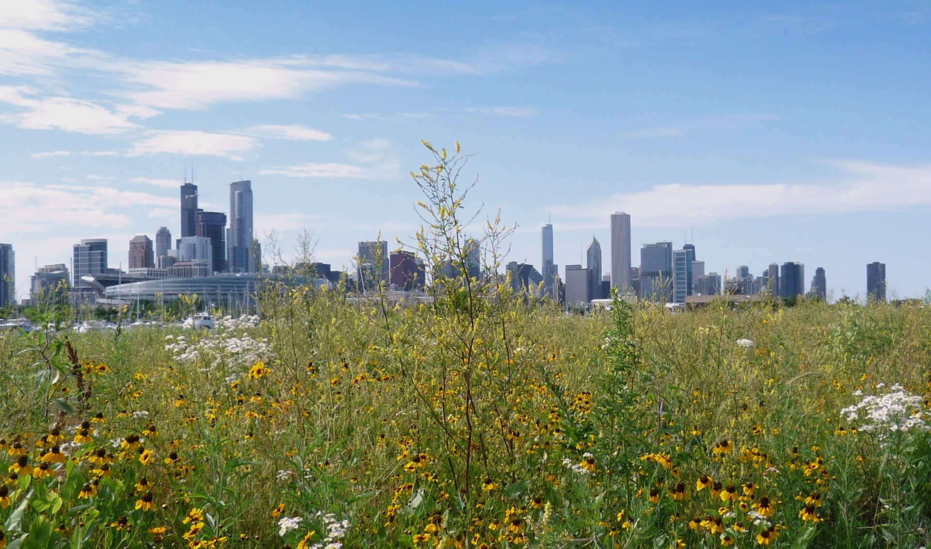 northerly-island-skyline