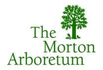 Logo-MortonArb-Larg